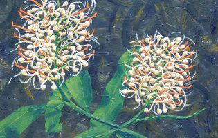 Ginger Lilies – acrylic on stretched canvas (c) Jennifer Mosher