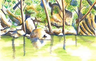 Turon River, Sofala – watercolour on paper (c) Jennifer Mosher