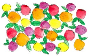 Orange and Lemons - watercolour and ink by Jennifer Mosher